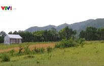 Nở rộ dự án tự phân lô bán nền tại ngoại thành Hà Nội