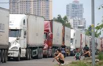 Đã thông quan được 50% số xe chở thanh long ở cửa khẩu quốc tế Lào Cai