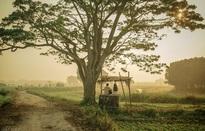 """Tỉnh Thừa Thiên - Huế xem xét đưa """"Mắt biếc"""" vào tour du lịch"""