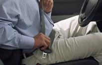 Ai là người cần cài dây an toàn khi đi ô tô?