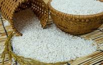 Bộ Công Thương kiến nghị cho xuất khẩu gạo nếp không quy định hạn ngạch