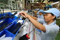 Vietnam's economic growth predicted to be higher than target