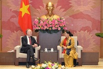 Vietnam to seriously realise commitments in deals with EU: NA leader