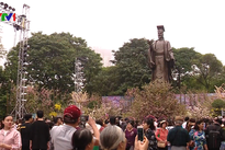 Cherry blossom festival in Hanoi