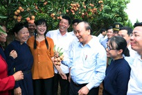 Fleet of lychee trucks depart for domestic and overseas markets
