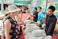 Bac Kan agricultural products promoted in Hanoi