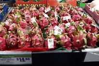 Vietnamese dragon fruit wins consumers' favour in Australia