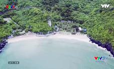 VTVTrip: Cát Bà - Viên ngọc xanh giữa Vịnh Bắc Bộ