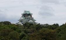 Nhiều người Việt chọn Nhật Bản làm điểm đến du lịch
