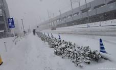 Đường sắt, máy bay hủy chuyến, tai nạn tăng vì tuyết dày ở Tokyo