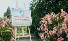 VTV Cup - Tự hào toả sáng: 3/8 - 10/8/2019 tại Quảng Nam