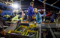 """Nhiều biện pháp khắc phục """"thẻ vàng"""" thủy sản của EU"""
