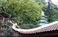 Chùa Trúc Lâm - dấu ấn văn hóa Phật giáo Việt Nam tại Pháp