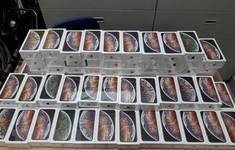 Phát hiện vụ buôn lậu hơn 1.000 chiếc iPhone tại sân bay Nội Bài