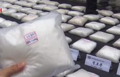 Hàn Quốc: Bắt giữ lượng lớn ma túy trị giá hơn 326 triệu USD