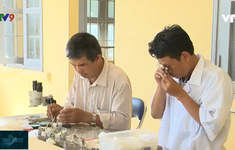 Tập trung xử lý dịch bệnh sốt rét tại Phú Yên