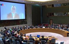 Việt Nam ủng hộ cuộc đấu tranh chính nghĩa của nhân dân Palestine