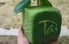 Thêm 2 sản phẩm trái cây tạo hình từ bưởi cho dịp Tết