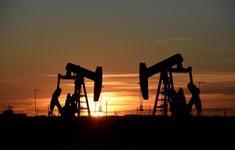 Saudi Arabia sẽ không cấm vận dầu mỏ