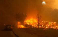 Bang California, Mỹ thu thập mẫu ADN để nhận dạng nạn nhân cháy rừng
