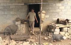 Lao động chui - canh bạc may rủi với nhiều người ở Hà Giang