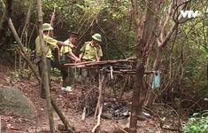 Phát hiện hàng trăm bẫy thú rừng ở Hà Tĩnh