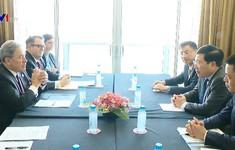 Thúc đẩy hợp tác Việt Nam - New Zealand