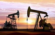 Giá dầu tiếp tục giảm trước thềm cuộc họp OPEC+