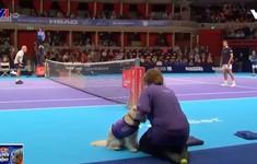 Thú vị những chú chó làm nhiệm vụ nhặt bóng tennis
