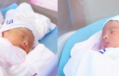 """Chương trình Giao lưu trực tuyến: """"Thành tựu mới giúp tăng tỷ lệ thành công IVF - thụ tinh trong ống nghiệm"""""""