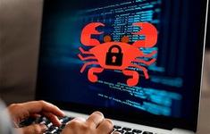 Biến thể mới của mã độc tống tiền đang tấn công người dùng Internet Việt Nam