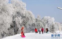 Sương băng cứng xuất hiện ở Đông Bắc Trung Quốc