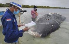 Indonesia nỗ lực giảm rác thải nhựa