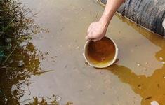 Sự cố tràn dầu ở Thanh Hóa đã lan rộng ra khoảng 5 ha đất nông nghiệp