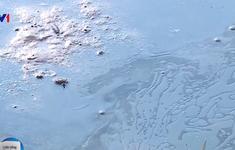 Tràn dầu ở Thanh Hóa: Hơn 4ha đất canh tác ô nhiễm nặng nề