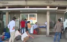 Nông dân Củ Chi phản ứng trước tình trạng HTX nợ tiền sữa