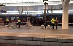 Áo: Hai tàu hỏa chở khách va chạm, 40 người bị thương