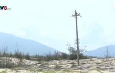 Bình Định: Người dân được giám sát khi các dự án điện gió triển khai