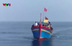Quảng Trị bắt tàu đánh cá bằng xung điện