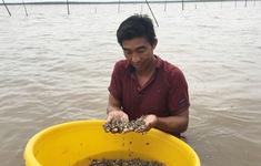 Triệt xóa băng nhóm cướp sò trên vùng biển Cà Mau