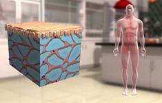 Những phương pháp điều trị ung thư mới