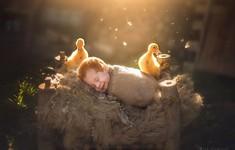 Mê mẩn bộ ảnh tuyệt đẹp chụp em bé với thú cưng