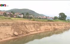 Dừng giao đất cho doanh nghiệp khai thác cát