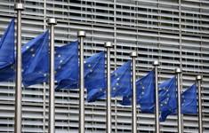 EU tham gia cuộc chiến pháp lý Mỹ - Trung tại WTO