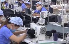 Sẽ tăng tuổi nghỉ hưu của lao động