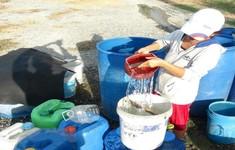 Người dân Bình Định mua nước trong mùa nắng