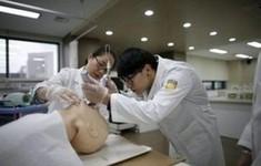 Hàn Quốc chú trọng tạo việc làm cho giới trẻ