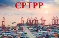 Cơ hội và thách thức từ CPTPP đã trở nên gần hơn bao giờ hết