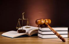 Sửa Luật Cạnh tranh để tạo môi trường kinh doanh bình đẳng