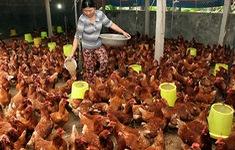 Đắk Lắk: Nâng cao nhận thức về phòng chống thiên tai và sản xuất thích ứng với biến đổi khí hậu